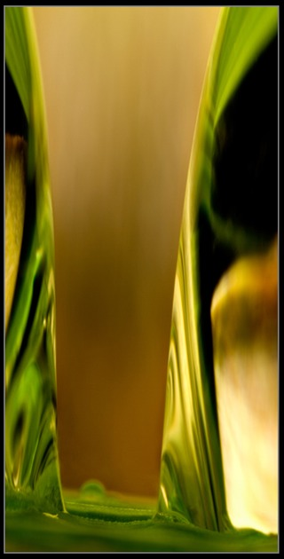Abstract Photography for sale by Artist C Ribet 046
