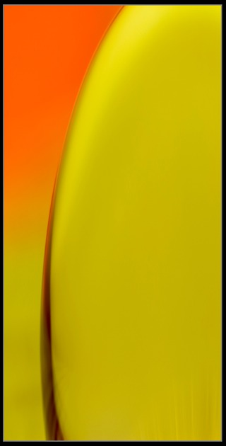 Abstract Photography for sale by Artist C Ribet 041
